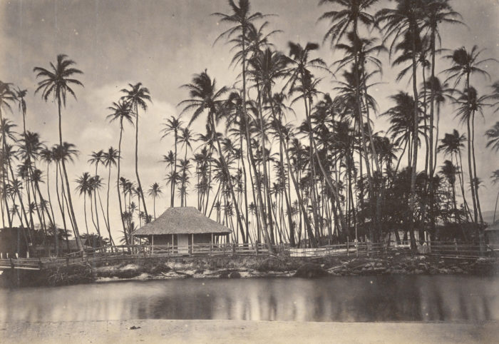 13. Photographed below is Kamehameha V's summer home at Helumoa, also known as The Royal Grove.