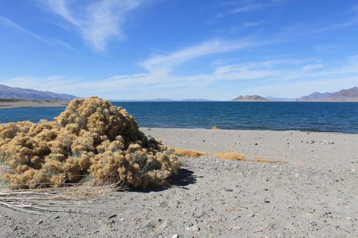 Pyramid Lake , Nevada