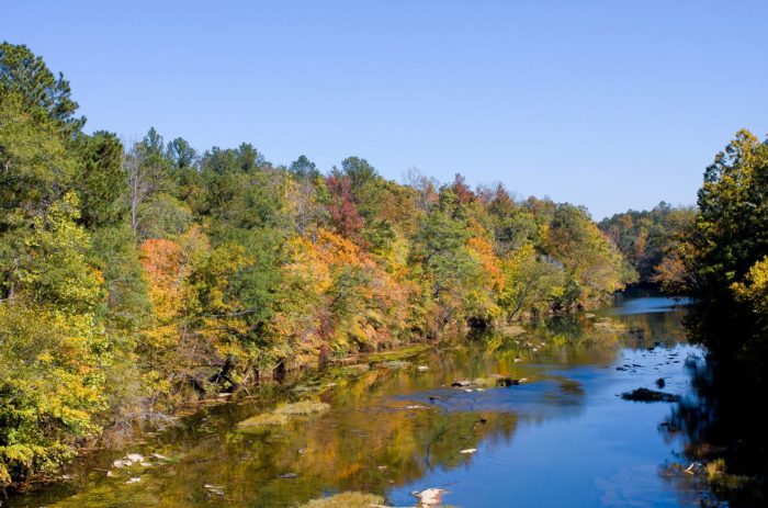 5. The Cahaba River is one of the most beautiful and biologically diverse rivers in the U.S.