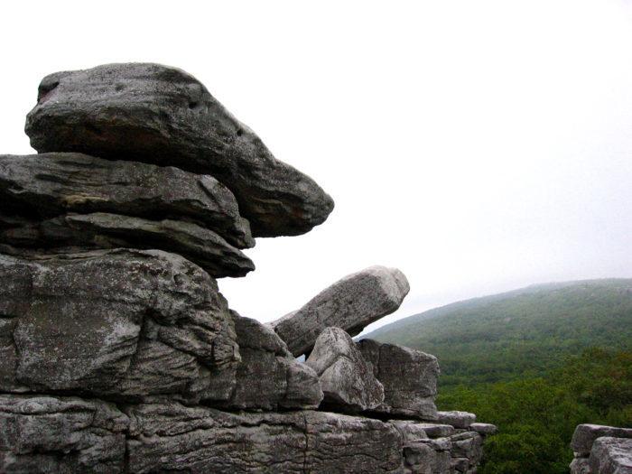 9. Bear Rocks Preserve