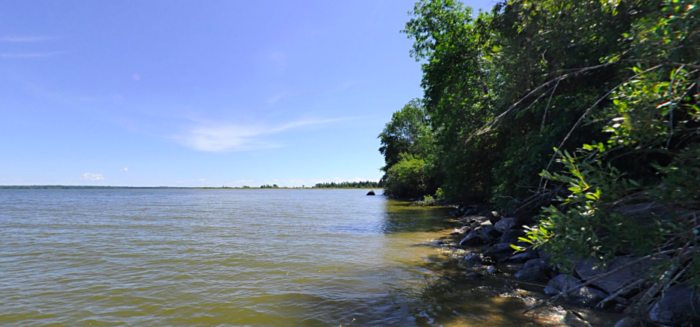 The shoreline is bordered by a thick forest.