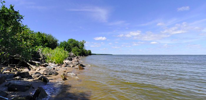 You can explore the rock shoreline areas as well, for even more views of the 950,400 acres of the lake.
