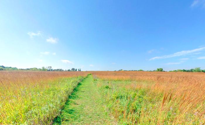 Explore the prairie restoration area...