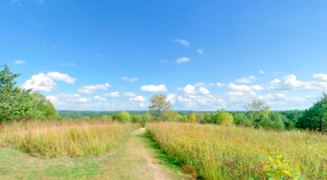 Stay In A Yurt For An Unforgettable Experience At This Minnesota State Park