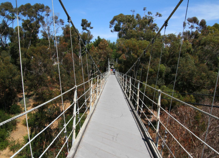5. Spruce Street Suspension Bridge