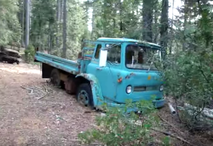 A blue international Cargostar sits in the clearing. This truck was once used as a transport vehicle for the military.