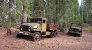 There's A Secret Boneyard In The Woods Where Former U.S. Military Vehicles Go To Die