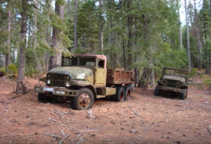 Moving farther into the forest, the explorer enters a clearing full of rusted and forlorn military vehicles.