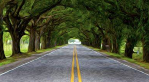 Louisiana's Hidden Tunnel Of Trees Is Positively Magical And You Need To Visit