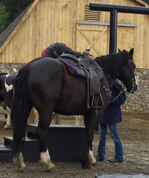 1. Horseback riding