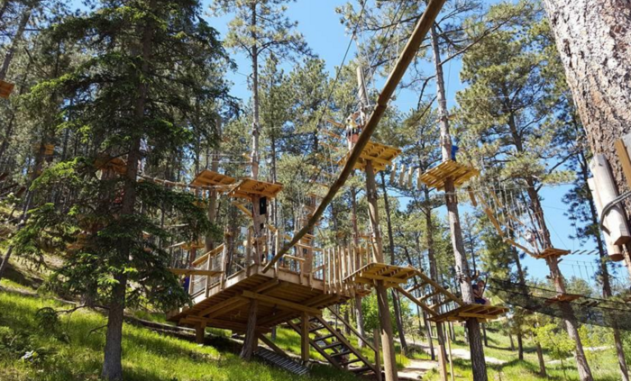 This path high through the trees offers the chance to see the surrounding forests from a birds eye view...