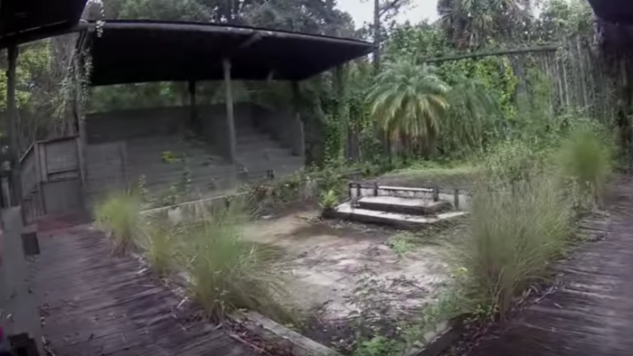 Though it promised visitors close encounters with exotic animals, this zoo had a nasty reputation for failing safety inspections. All the bad press led to its closure in 2002.