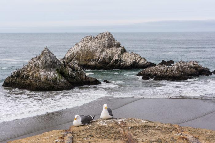 6. Seal Rocks