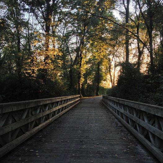5. Shelby Park Greenway