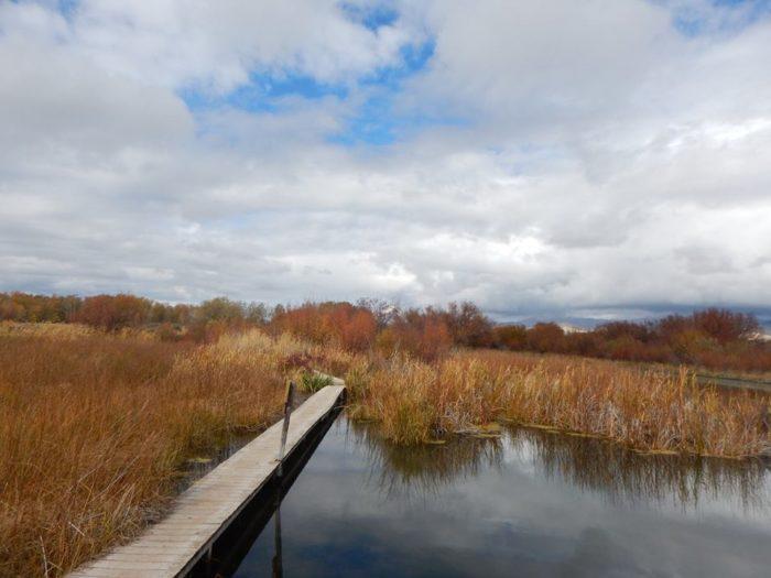 Silver Creek Preserve Boardwalk