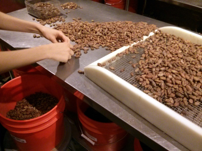 Sorting the Beans