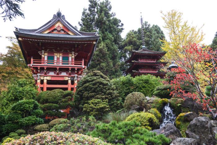7. Find Your zen at the Japanese Tea Garden.