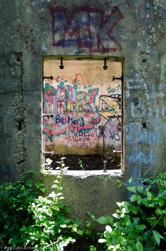 Toms River Silo Ruins - XXXV