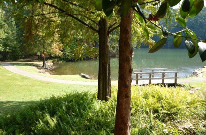 7. Aldridge Gardens Trail