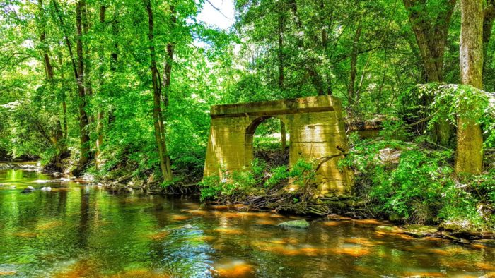 A Relaxing Float Down Uwharrie River Is Perfect For A