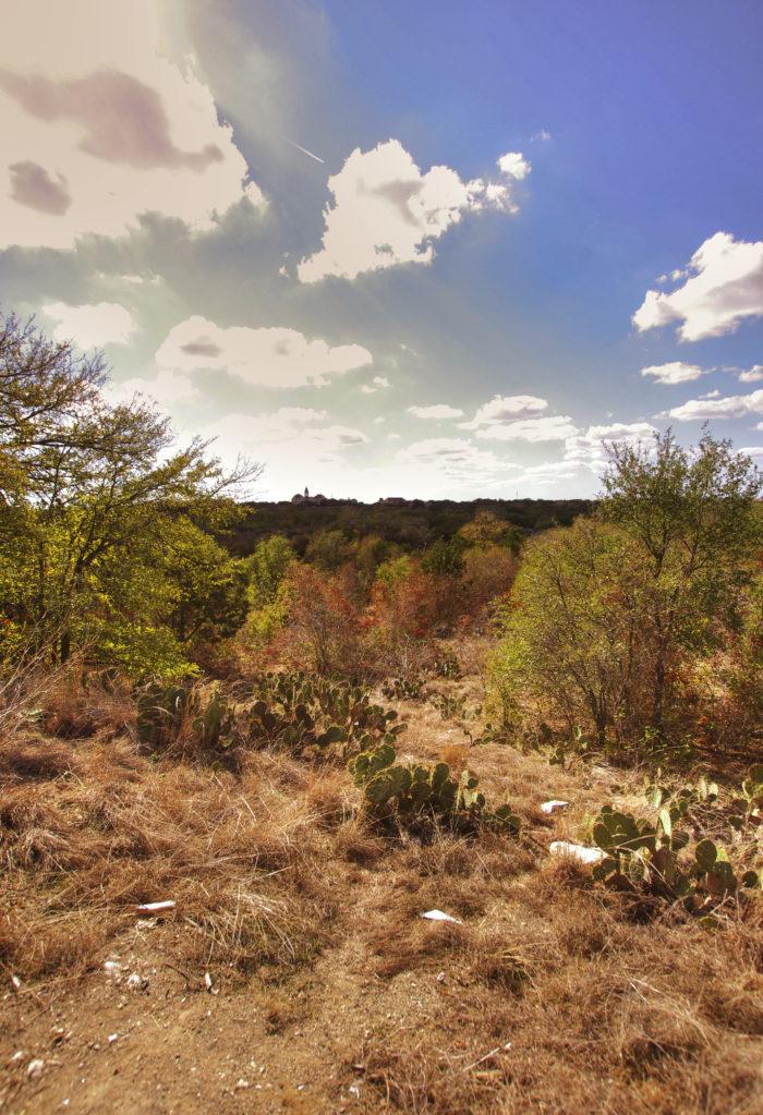 5. Blunn Creek Nature Preserve