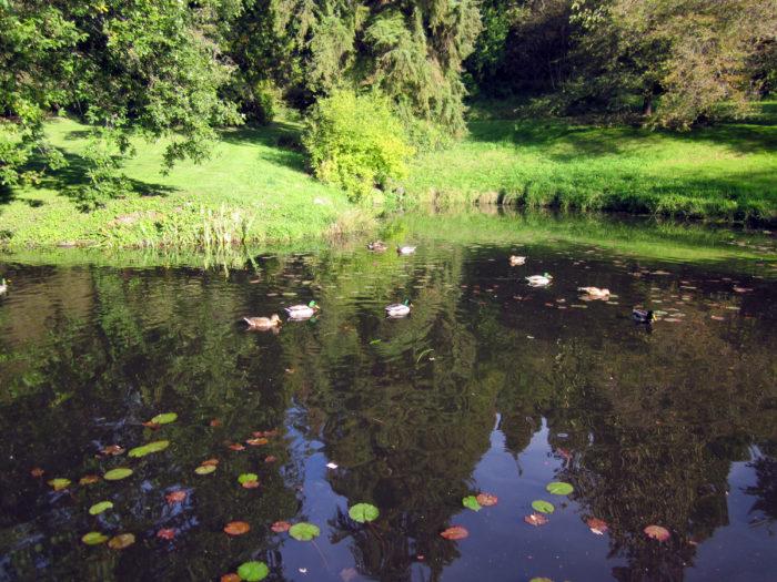 11. Washington Park Arboretum