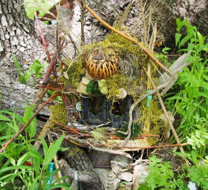 1. The Zilker Park Woodland Faerie Trail