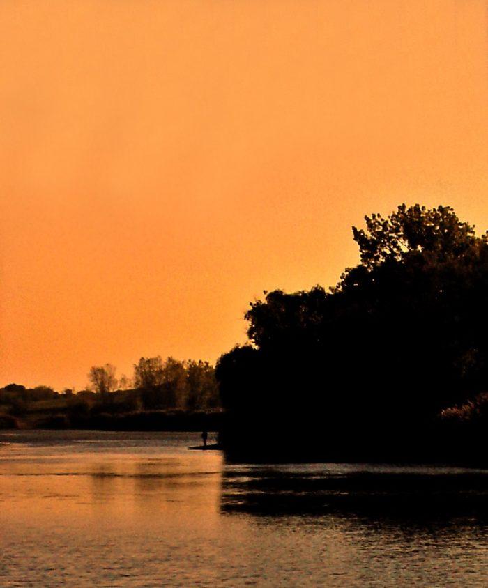6. Mallard Lake Forest Preserve
