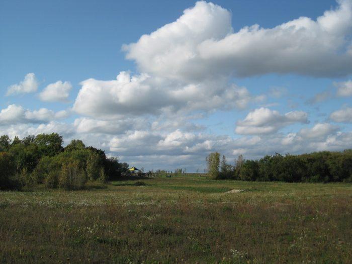 9. Heron Creek Forest Preserve
