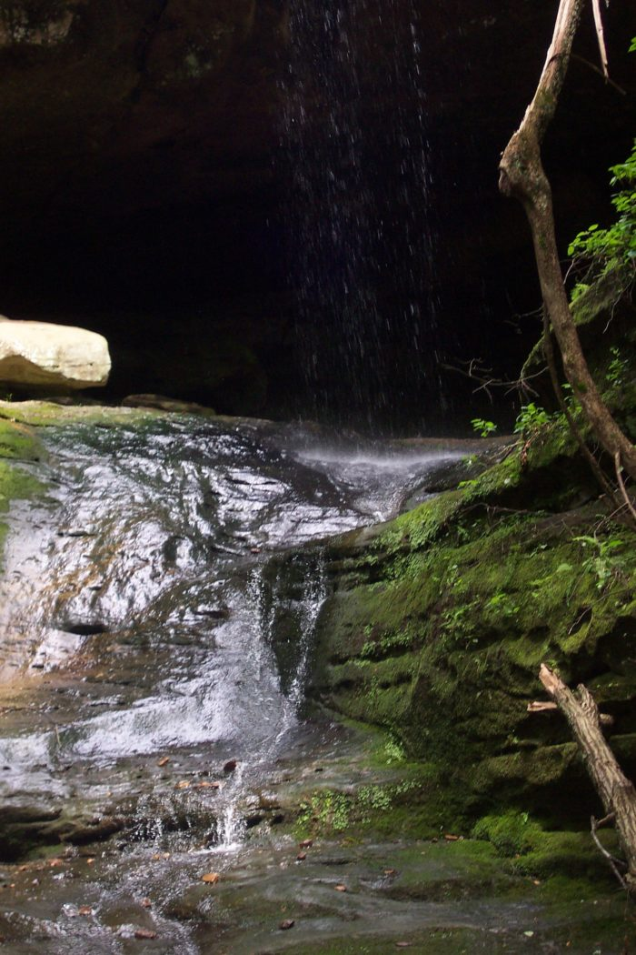 7. Ferne Clyffe State Park