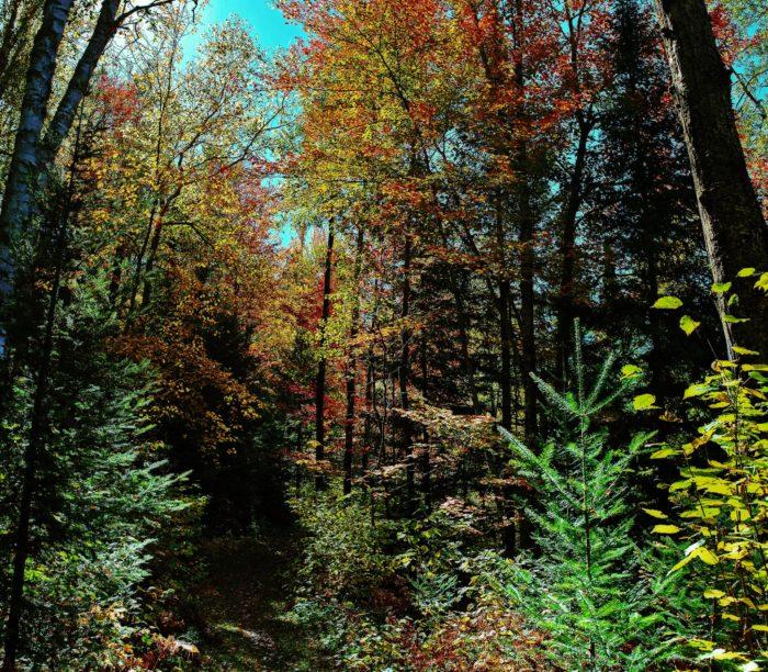 The trail runs through Penokee Mountain Range.