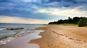 Few People Know About These Obscure Sand Dunes Hiding In Wisconsin