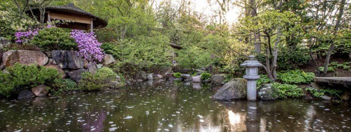8. Anderson Japanese Gardens