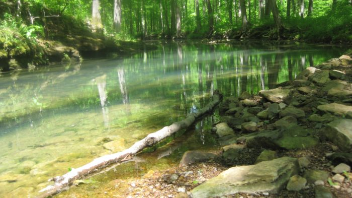 The 8 Best Hikes You Can Take In Shawnee National Forest