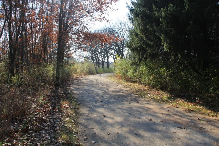 5. What you have is a well-maintained, manicured trail.