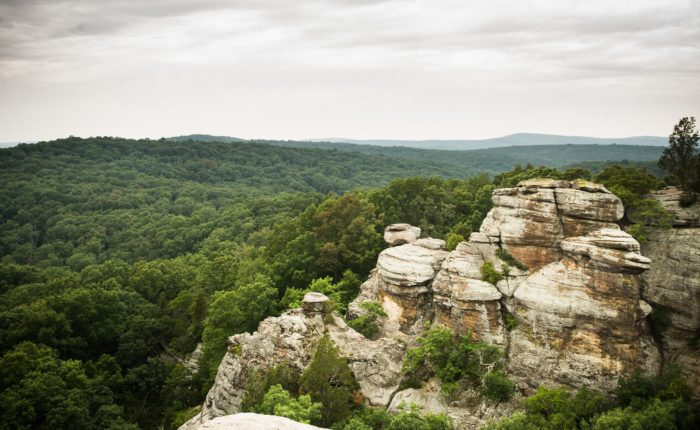 10 Short And Easy Hikes In Illinois