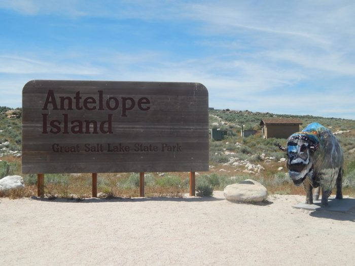 Antelope Island is 23,000 acres. It became a state park in 1981.