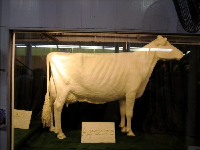 3. You've seen a butter sculpture of a cow up close.