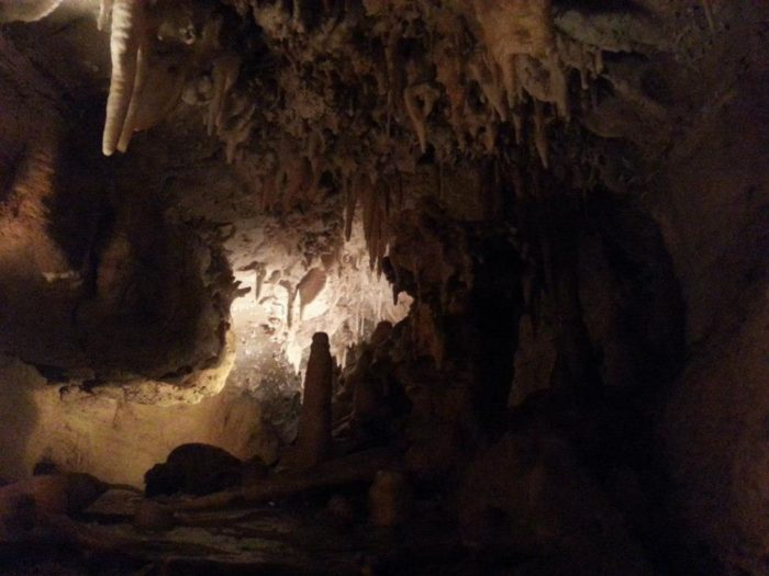 You can take Wild Cave Tours to explore un-excavated passageways. This guided tour takes about one and a half hours.
