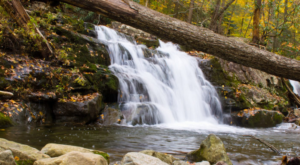 This Hike Will Lead You To One Of The Most Enchanting Spots In New Jersey