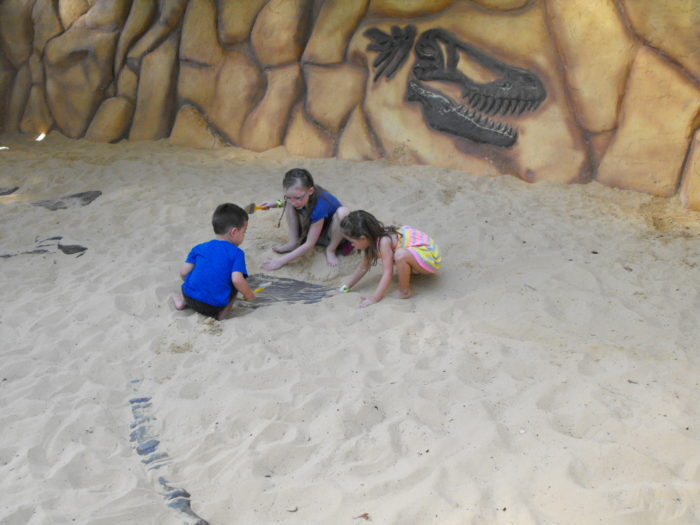 ...and uncover a 27-foot long skeleton buried underneath the sand.