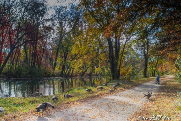 10. Delaware & Raritan Canal Towpath