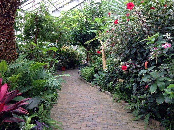 gardens inside