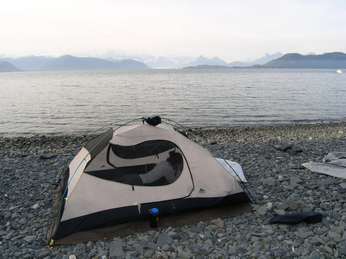 7. Glacier Island – Prince William Sound