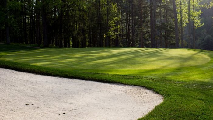 Golfers can get in multiple games at the two 18 hole golf course on the property. There's also a putt putt course for those with shorter attention spans.