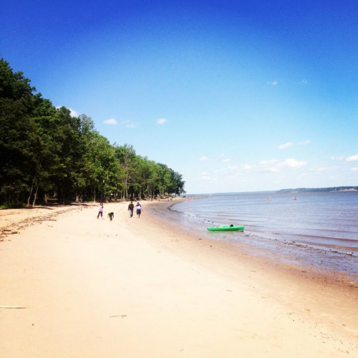 Right on the tidal shores of the Potomac River, a quiet beach is surrounded by hiking, picnicking, fishing and boating activities.