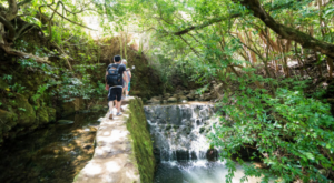 The Little Known Natural Oasis In Hawaii That'll Be Your New Favorite Destination