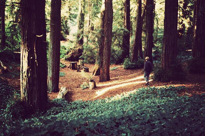 4. John Muir Park