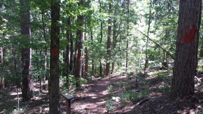 6. Lake Claiborne State Park Trail, Homer