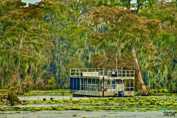 5. Lake Martin